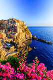 Cinque Terre, Italien royaltyfria foton