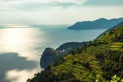 Cinque Terre Italien terrasserar royaltyfri fotografi