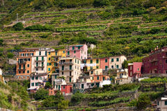 Cinque Terre, Italy Royalty Free Stock Photography