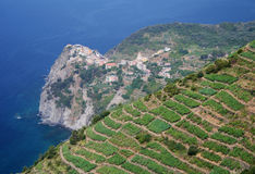 The Cinque Terre in Italy Royalty Free Stock Photography