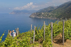 Cinque Terre Landscape Royalty Free Stock Photography