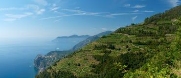 Cinque Terre panoramisch stockbild