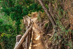 Cinque Terre park narodowy zdjęcia royalty free
