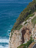 Cinque Terre typical steep cliff pine trees and rocks Royalty Free Stock Photography