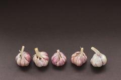 Cinque teste d'aglio in una fila Immagine Stock Libera da Diritti