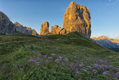 Cinque Torri mountains at sunset with pink flowers on foreground, Dolomites, Veneto, Italy Stock Image