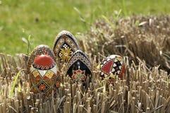 Cinque uova Immagine Stock Libera da Diritti