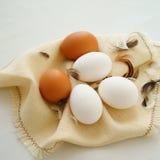 Cinque uova del pollo fotografie stock libere da diritti