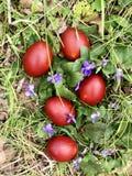 Cinque uova di Pasqua colorate immagini stock