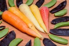Cinque varietà della carota Immagine Stock
