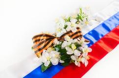 Cinta de Georgievsky contra la bandera y la rama rusas de la manzana Fotografía de archivo libre de regalías