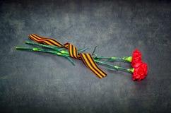 Cinta de los claveles y de San Jorge en un fondo oscuro Fotografía de archivo