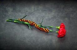 Cinta de los claveles y de San Jorge en un fondo oscuro Fotografía de archivo libre de regalías