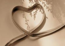 Cinta en la forma de un corazón Fotos de archivo libres de regalías
