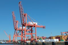 Cintainer terminal with cranes on pier Stock Photos