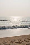 Cintilar acena na praia imagem de stock
