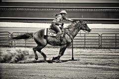Cintreuse occidentale de Polonais de cheval dans la sépia graveleuse Photographie stock libre de droits