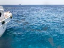 Cintrez, le côté du bateau blanc et la vue des magmas, flaques d'huile, liquides sales, la mer bleue de sel, l'océan dans le trop photos libres de droits