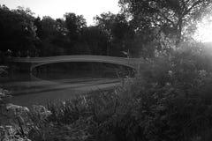 Cintrez le pont au-dessus du lac et derrière l'usine dans le style noir et blanc Photos stock