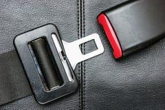 Cinturón de seguridad en un cuero negro imagen de archivo
