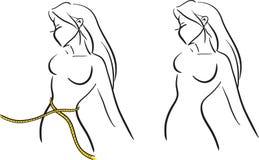 Cintura de medición libre illustration