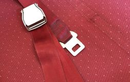 Cintura di sicurezza dell'aeroplano Immagine Stock