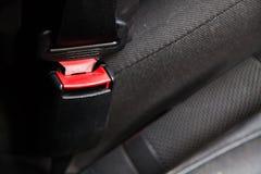 Cintura di sicurezza rossa Fotografia Stock Libera da Diritti