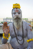A cinza cobriu Sadhu 1 Imagens de Stock Royalty Free