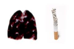 Cinza de cigarro Imagens de Stock
