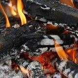 Cinza de madeira Imagens de Stock Royalty Free