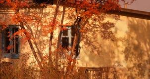 Cinza de montanha perto da casa Imagens de Stock Royalty Free