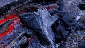 A cinza está encontrando-se após o fogo 4k UHD filme