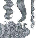 Cinza longo brilhante, favoravelmente em linha reta e ondas do cabelo ondulado ilustração stock