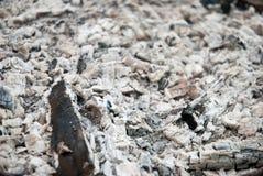 Cinzas imagens de stock