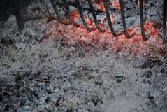 Cinzas Foto de Stock Royalty Free