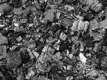 Cinzas foto de stock