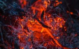 Cinzas ardendo sem chama no fogo Fotografia de Stock