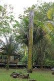 Cinzeladura aborígene Fotos de Stock