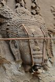 Cinzeladura de pedra dos dançarinos de Apsara, em Camboja fotografia de stock