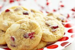 Cioccolata bianca Chip Cranberry Cookies Fotografie Stock Libere da Diritti