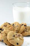 Biscotti del mirtillo e della cioccolata bianca Immagini Stock
