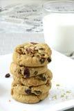Biscotti del mirtillo e della cioccolata bianca Fotografia Stock Libera da Diritti