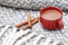 Cioccolata calda con cannella Immagine Stock Libera da Diritti