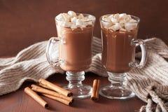 Cioccolata calda con la mini bevanda di inverno della cannella delle caramelle gommosa e molle Immagini Stock Libere da Diritti