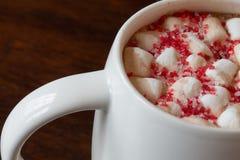 Cioccolata calda con le caramelle gommosa e molle Immagini Stock Libere da Diritti