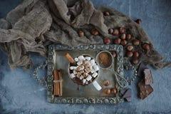 Cioccolata calda deliziosa con le caramelle gommosa e molle, i dadi e la cannella su un vassoio d'annata, fuoco selettivo Immagini Stock