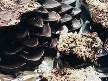 Cioccolato artigianale fotografia stock libera da diritti