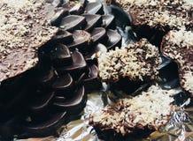 Cioccolato artigianale immagini stock libere da diritti