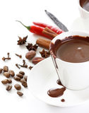 Cioccolato caldo con la spezia fotografia stock