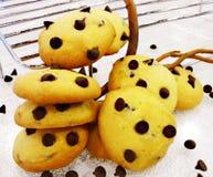Cioccolato Chip Cookie Immagine Stock
